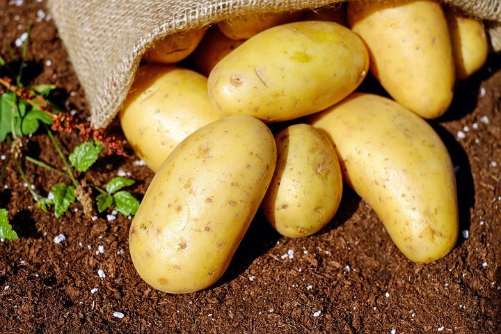 potatoes 1585075 480